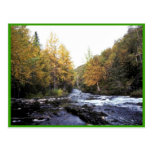 Russian River Postcard