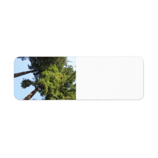 Russian River Redwoods Label