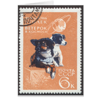 Russian Space Dogs 1966 Cosmos 110 Stationery Note Card