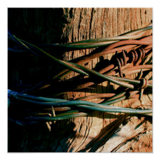Rust and Blue Barbed Wire Poster