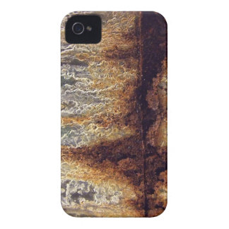 Rust and Corrosion Blackberry Bold Case