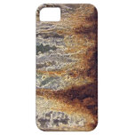 Rust and Corrosion iPhone Case-Mate ID iPhone 5 Case