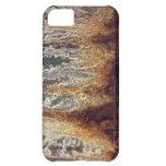 Rust and Corrosion iPhone Case-Mate ID iPhone 5C Cases