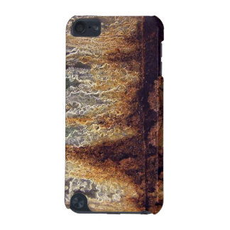 Rust and Corrosion iPod Touch Case