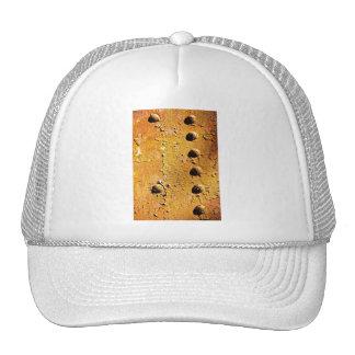rust and peel trucker hat