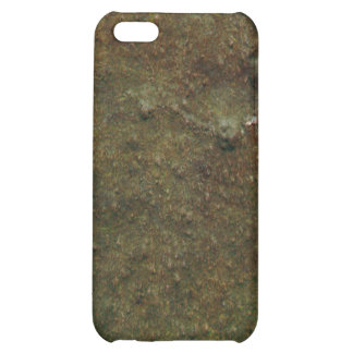 Rusted Paint Case For iPhone 5C