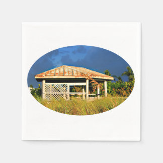 rusted roof beach dune building in Florida Paper Napkin