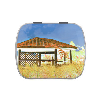 rusted roof beach dune building invert blue jelly belly tin