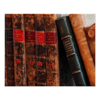 Rustic Antique Library Books Shelf Poster