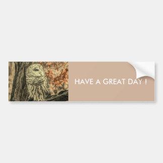 rustic autumn leaves oak tree white owl bumper sticker