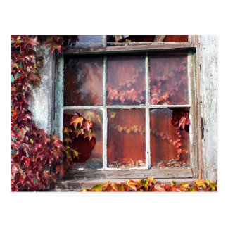 Rustic Autumn Vines Against An Old Building Card