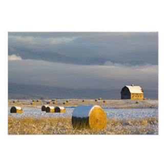 Rustic barn and hay bales after a fresh snow 3 photo print