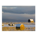 Rustic barn and hay bales after a fresh snow 3 postcard