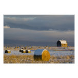 Rustic barn and hay bales after a fresh snow 3 poster