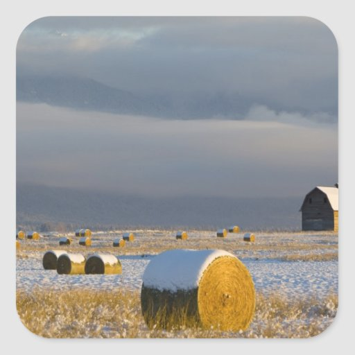 Rustic barn and hay bales after a fresh snow 3 square sticker
