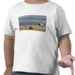 Rustic barn and hay bales after a fresh snow 3 t shirt