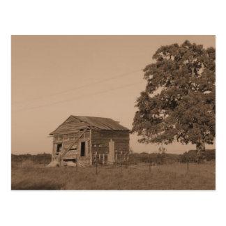 Rustic barn with tree postcard