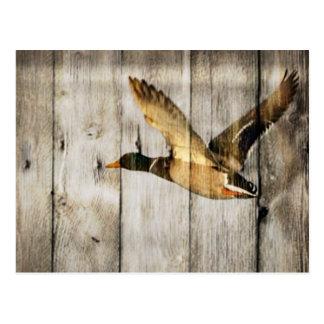 Rustic Barn wood Western Country flying Wild Duck Postcard