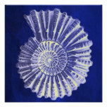 rustic beach  ocean blue vintage sea shells poster