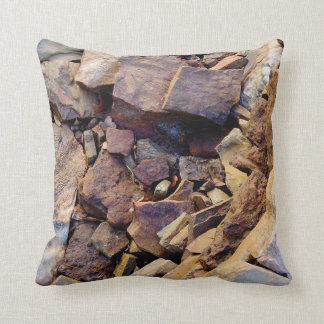 Rustic Beauty 2 Pillow