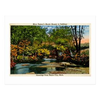 Rustic Beauty is Sublime Greetings Boyne City, MI Postcard
