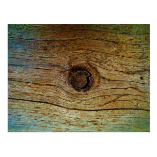 Rustic Blue toned tree wood Postcard