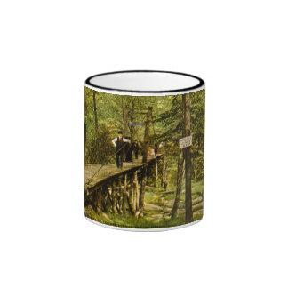 Rustic Bridge Eastman Springs Benton Harbor Mi Ringer Mug