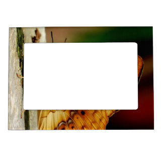 Rustic Brush Footed Butterfly Photo Frame Magnet