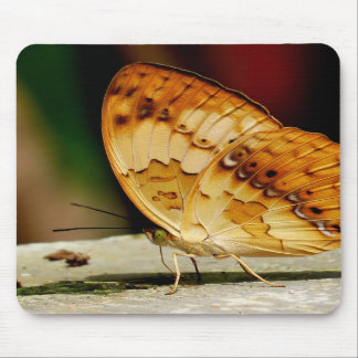 Rustic Brush Footed Butterfly Mousepad
