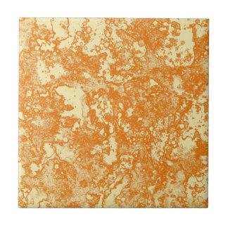 rustic ceramic tile
