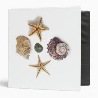 rustic coastal  beach chic seashell starfish binder