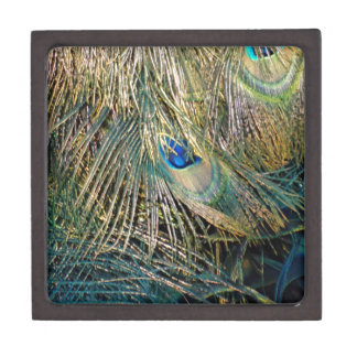 Rustic Color Peafowl Feathers Jewelry Box
