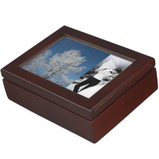 Rustic country blue sky snow scene  winter trees memory box