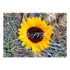 Rustic Country Camo Sunflower Wedding RSVP Cards