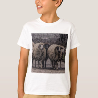 Rustic country road ranch farm herd of sheep T-Shirt