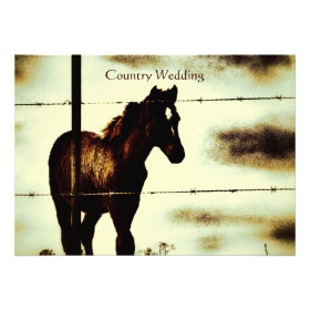 Rustic Country Wedding Invitations with Horse