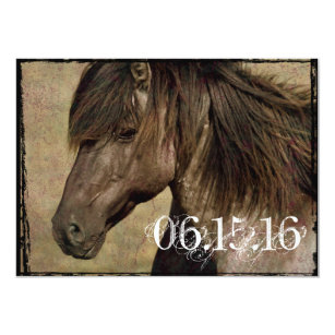 Horse Wedding Invitations Zazzle