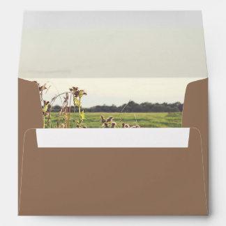 Rustic Countryside Scene Romantic Wedding Envelope
