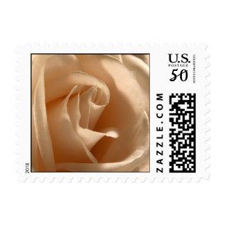 Rustic Cream Rose Small Square Photo Wedding RSVP Postage