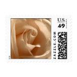 Rustic Cream Rose Small Square Photo Wedding RSVP Stamp