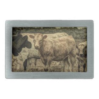 Rustic Dairy Farm Animal Brown Swiss Cow Rectangular Belt Buckle