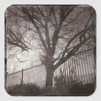 Rustic Distressed Tree Silhouette Grunge Square Sticker