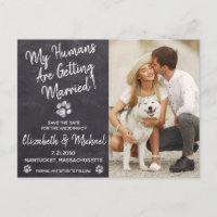 Rustic Dog Wedding Dog Save The Date Announcement Postcard