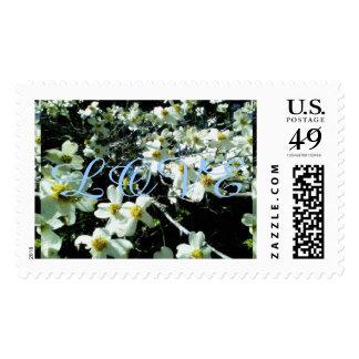 Rustic Dogwood Blossom LOVE Postage