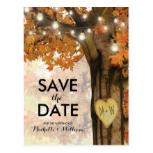 Rustic Fall Autumn Tree Lights Save the Date Postcards