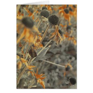 Rustic Fall Flowers Card