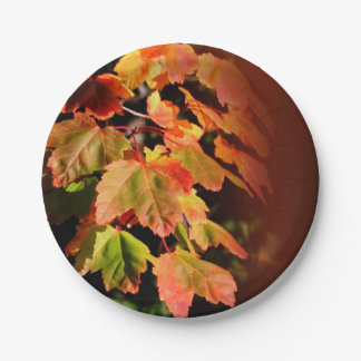 Rustic Fall Wedding Autumn Foliage Photo Leaves Paper Plate