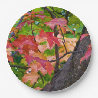 Rustic Fall Wedding Colors Autumn Foliage Photo Paper Plate