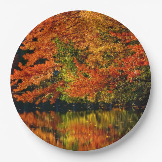 Rustic Fall Wedding Colors Autumn Reflection Paper Plate
