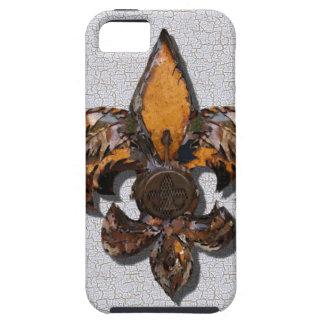 Rustic Fleur De Lis Crackle Background iPhone 5 Case